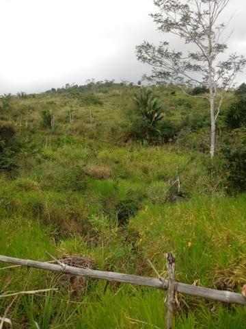 Vendo Fazenda Cachoeira do Meirim