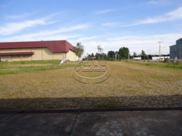 Galpão/depósito/armazém para alugar em Morada gaúcha, Gravataí cod:1135 - Foto 12