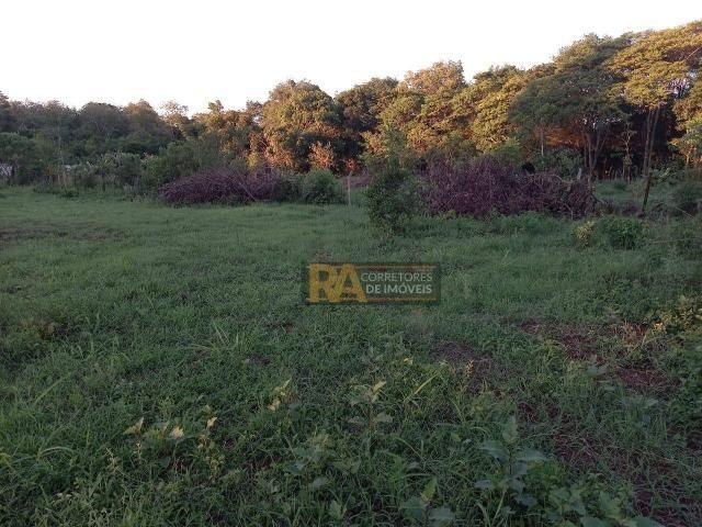 Chácara com 2 dormitórios à venda, 10000 m² por R$ 750.000,00 - Loteamento Porto Dourado - - Foto 11