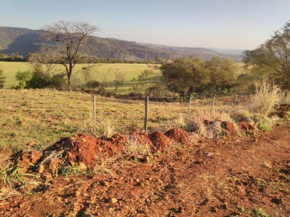 8271 | Fazenda à venda em ZONA RURAL, Cascavel - Foto 8