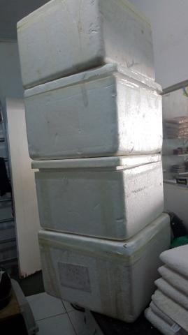 Caixa de isopor 40x40