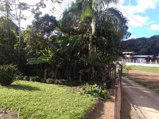 Chácara Em Guaramirim - Foto 7
