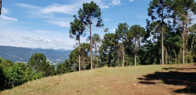 Terreno em Urubici/sítio em Urubici - Foto 3