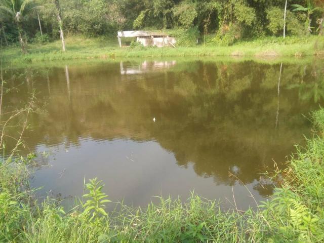 Linda fazenda em Cachoeiras de Macacu 20 alqueires oportunidade!!!! - Foto 2
