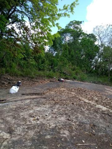 Terreno em Tartarugalzinho,perto do ninho do socó - Foto 5
