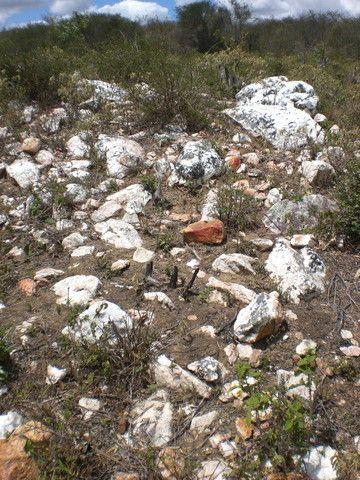 Área de garimpo de esmeralda com 10 hectares localizada no garimpo de Socotó-Bahia - Foto 5
