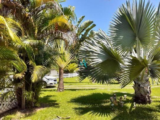 Sítio com 3 dormitórios, 4000 m² - venda por R$ 580.000,00 ou aluguel por R$ 4.500,00/mês  - Foto 3