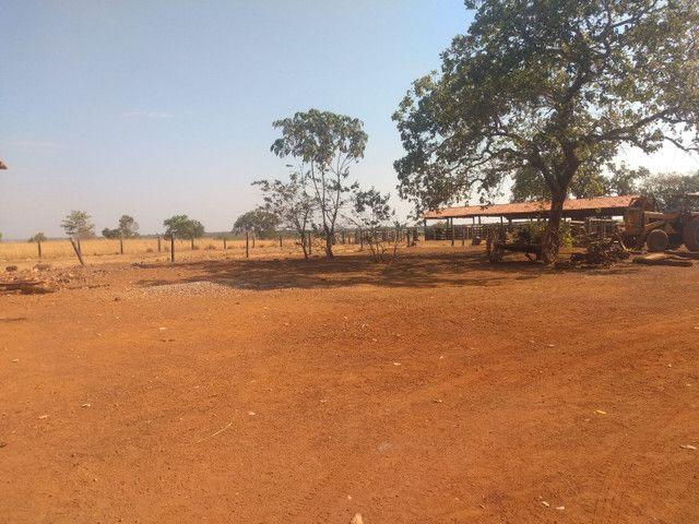 Faz 125 Alq vale do Araguaia Plata tudo