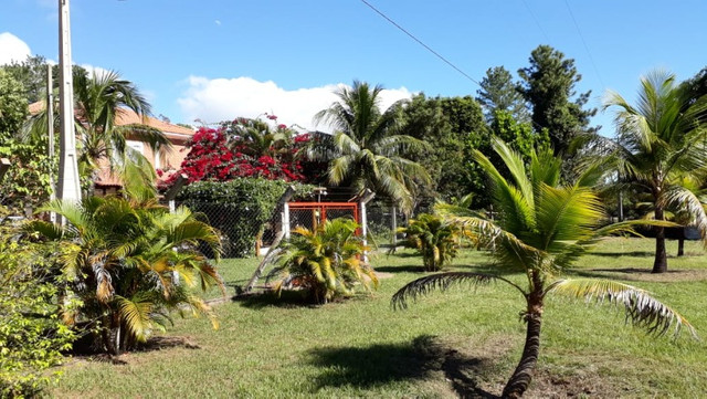 Rancho as margens do rio Sucuriú - Foto 4