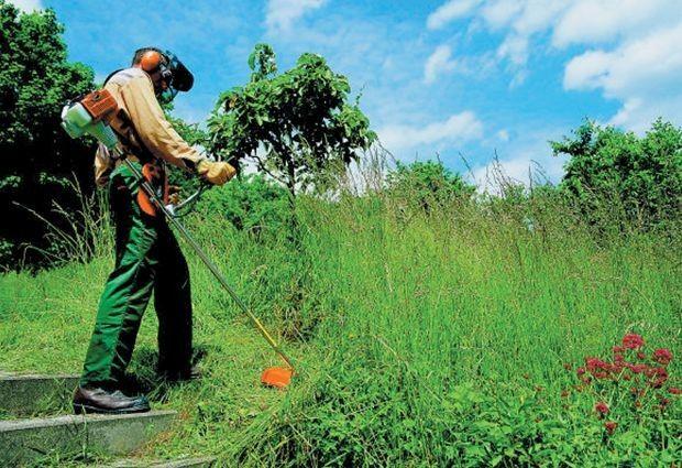 Operador Roçadeira - Terrenos - Limpeza