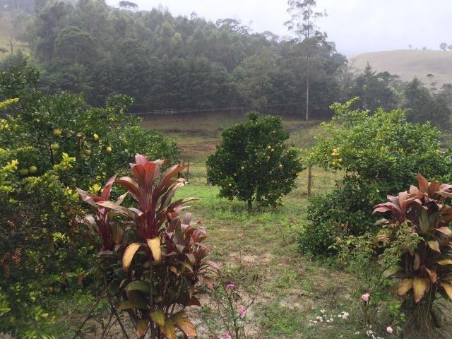 Fazenda com 300 mil m² - Foto 13