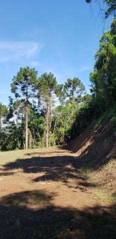 Terreno em Urubici/sítio em Urubici - Foto 5
