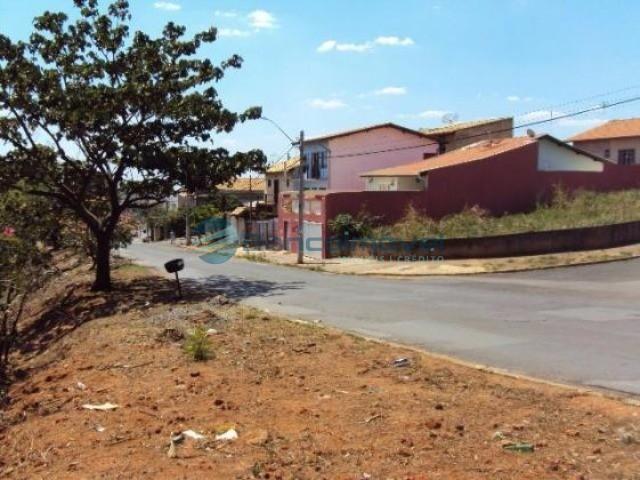 Terreno para alugar em Jambeiro, Campinas cod:TE00205 - Foto 2
