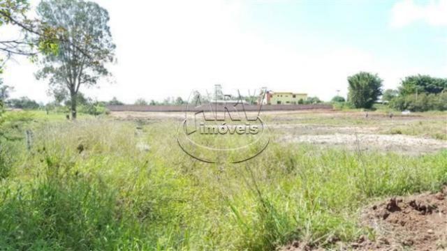 Terreno à venda em Costa do ipiranga, Gravataí cod:1013 - Foto 17