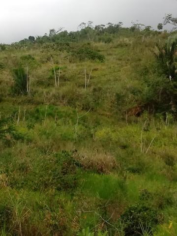Vendo Fazenda Cachoeira do Meirim - Foto 2