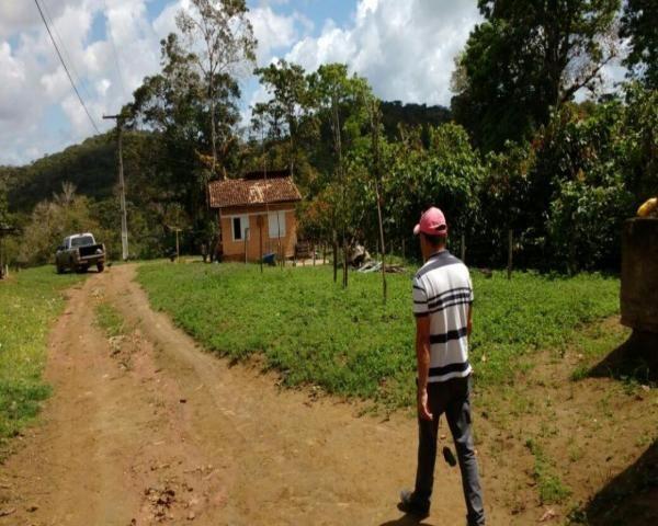 Fazenda sempre alegre a 20km de ilhéus - Foto 13