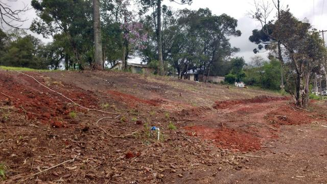 Terreno para Barracões e Oficas Ótima Localização CIC/ BR 277 - Foto 3