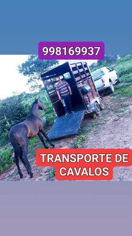 FRETES E CARRETOS PARA TODO BRASIL  - Foto 2