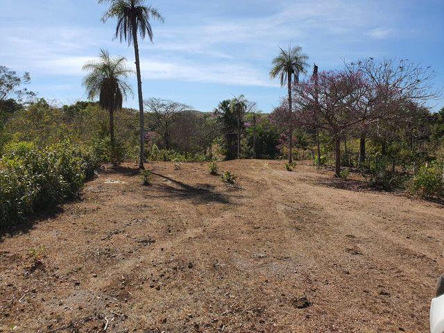 Faz 585 Alq planta os taiao 50 % até 300 Alq vale do Araguaia - Foto 2