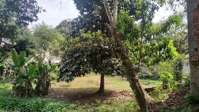 Lindo sítio em Guapimirim - 2.000m²  - Venda direta com Proprietário - Foto 14