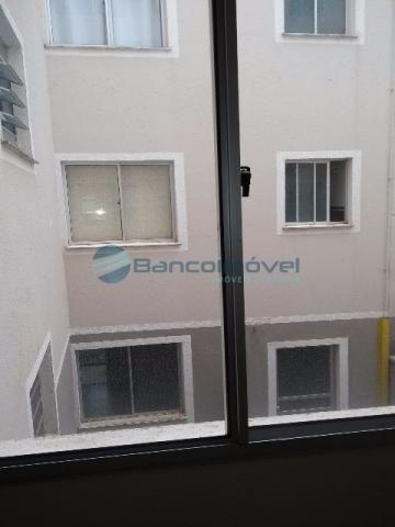 Apartamento para alugar com 2 dormitórios em Jardim flamboyant, Paulínia cod:AP01546 - Foto 3