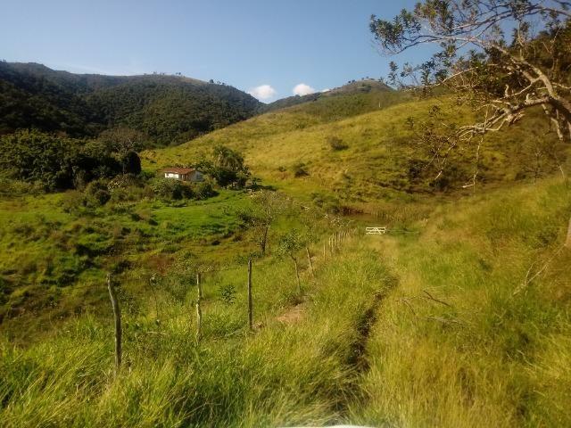 Fazenda 97 Alqs Na Região do Vale do Paraíba SP Negocio de oportunidade - Leia o anúncio - Foto 15