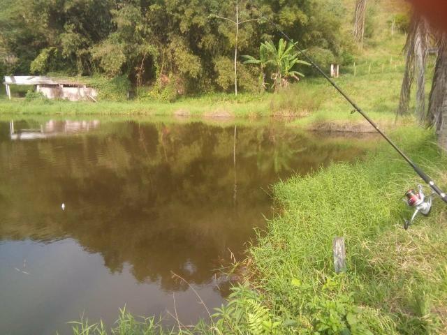 Linda fazenda em Cachoeiras de Macacu 20 alqueires oportunidade!!!! - Foto 7