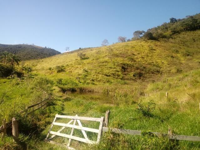 Fazenda 97 Alqs Na Região do Vale do Paraíba SP Negocio de oportunidade - Leia o anúncio - Foto 18