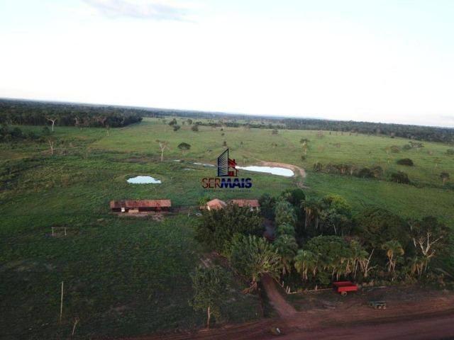 Fazenda à venda, 105 alqueires por R$ 2.625,000 - Alta Floresta D'Oeste/RO - Foto 4