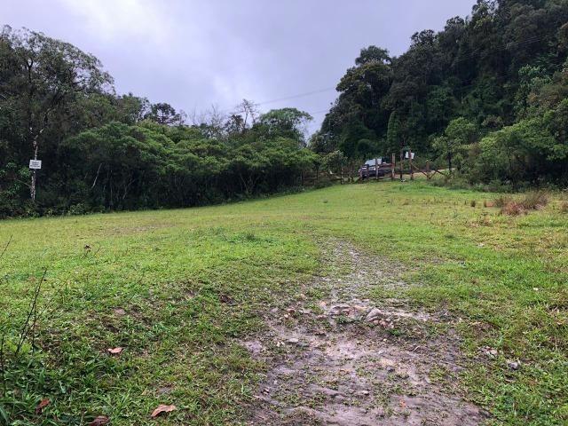 Chácara em São José dos pinhais bairro Castelhanos - Foto 4