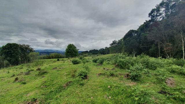 Sitio em Urubici /chácara dentro da cidade/área rural na cidade de Urubici - Foto 6