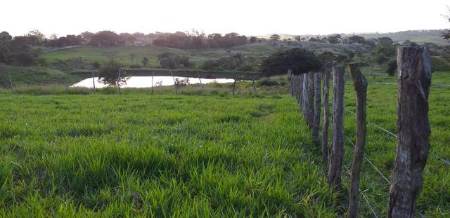 Imóveis/ 2 terrenos em mar-vermelho - Foto 3