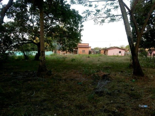 Terreno 40x50 em Maruda-Pa - Foto 3