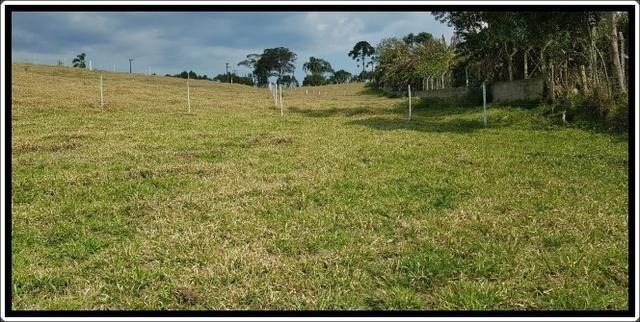 Terreno próximo á cotia - Foto 3