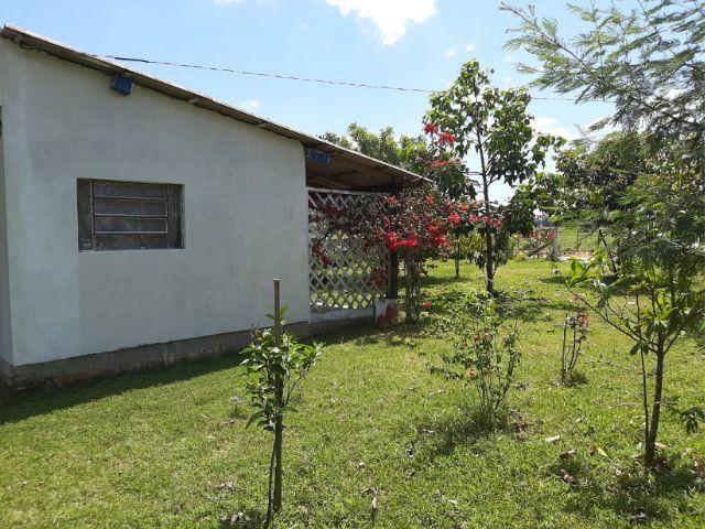 Velleda oferece sítio 1100 m², casa nova alvenaria, 1 km da RS-040 - Foto 3