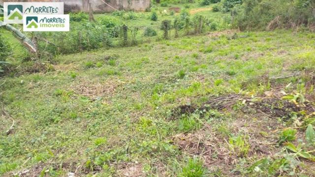 Terreno-para-Venda-em-Barreiros-Morretes-PR - Foto 6
