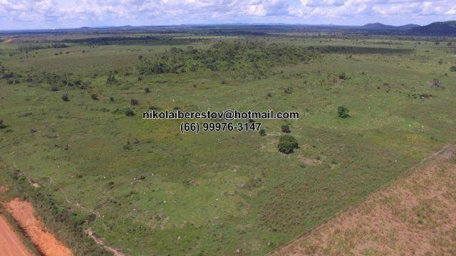 Fazenda 1.500 hectares nordeste mt nikolaiimoveis
