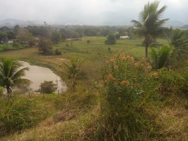Linda fazenda em Cachoeiras de Macacu 20 alqueires oportunidade!!!! - Foto 20