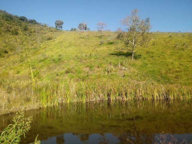 Fazenda 97 Alqs Na Região do Vale do Paraíba SP Negocio de oportunidade - Leia o anúncio - Foto 16