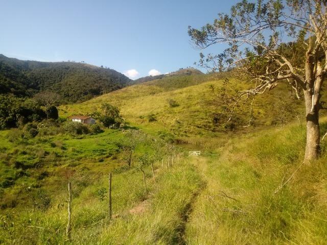 Fazenda 97 Alqs Na Região do Vale do Paraíba SP Negocio de oportunidade - Leia o anúncio - Foto 19