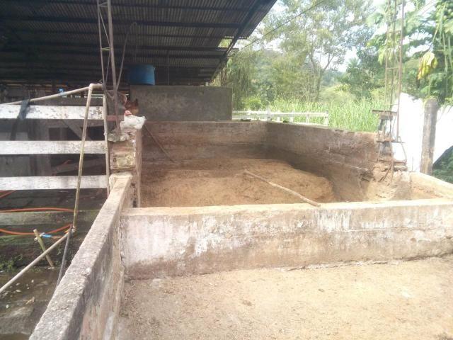 Linda fazenda em Cachoeiras de Macacu 20 alqueires oportunidade!!!! - Foto 17