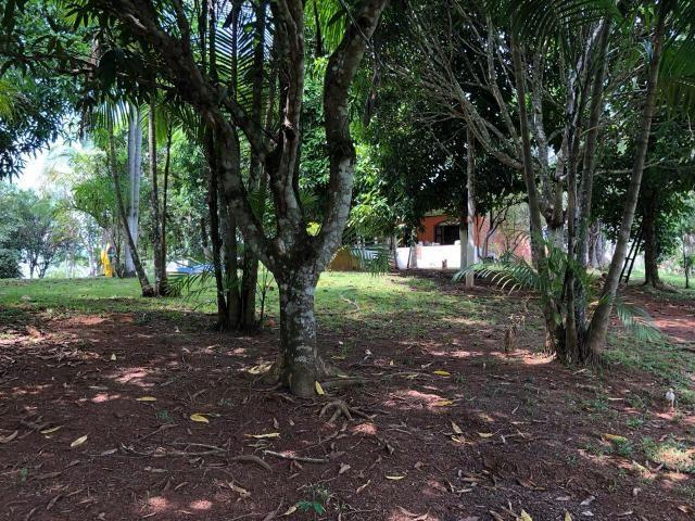 Chácara no km 18 Porto Acre - Foto 14