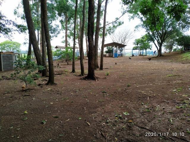 Fazenda - Foto 11