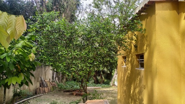 Lindo sítio em Guapimirim - 2.000m²  - Venda direta com Proprietário