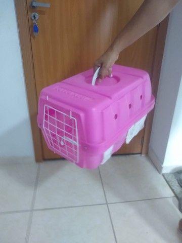Vendo Caixinha para cão ou gato. - Foto 5