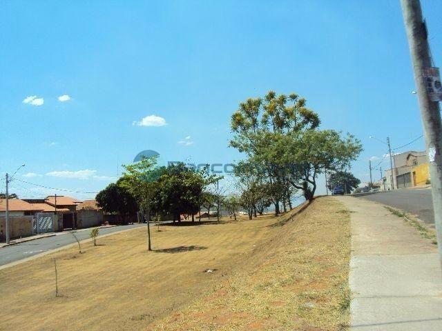 Terreno para alugar em Jambeiro, Campinas cod:TE00205 - Foto 5