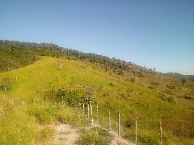 Fazenda 97 Alqs Na Região do Vale do Paraíba SP Negocio de oportunidade - Leia o anúncio - Foto 8