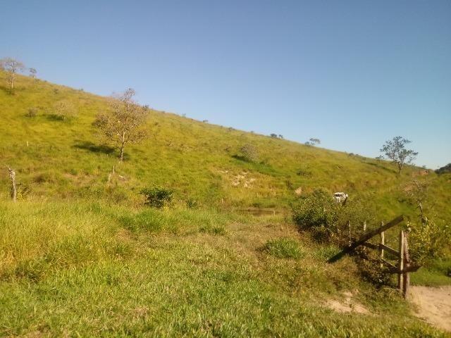 Fazenda 97 Alqs Na Região do Vale do Paraíba SP Negocio de oportunidade - Leia o anúncio - Foto 11