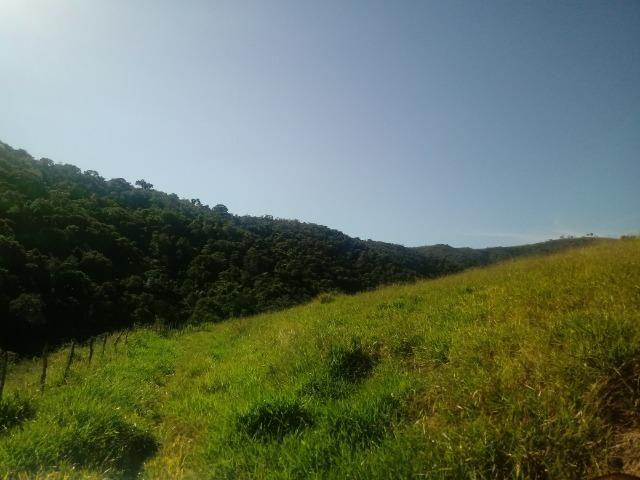 Fazenda 97 Alqs Na Região do Vale do Paraíba SP Negocio de oportunidade - Leia o anúncio - Foto 9