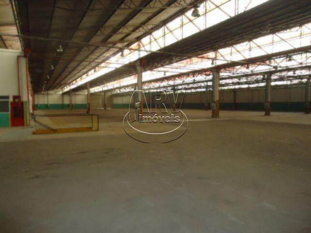 Galpão/depósito/armazém para alugar em Morada gaúcha, Gravataí cod:1135 - Foto 15